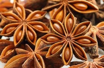 Лекарство из семян аниса