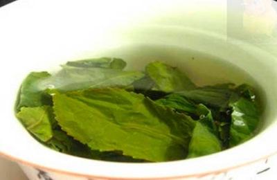 Сок из мёда и листьев подорожника