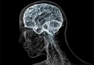 повышение мозгового кровообращения