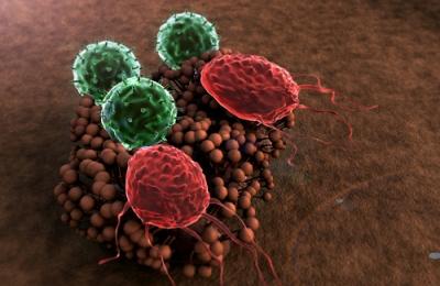 Ослабленная иммунная система