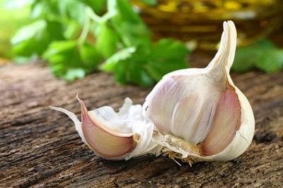 garlic__1_